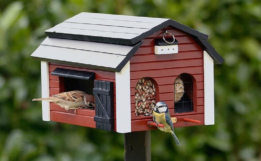 voederhuisje vogels