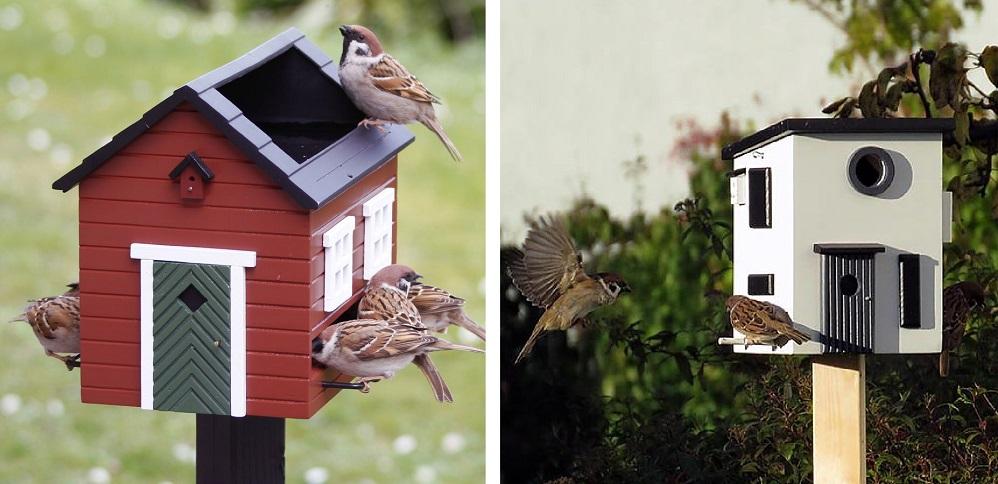 vogelhuisje met paal