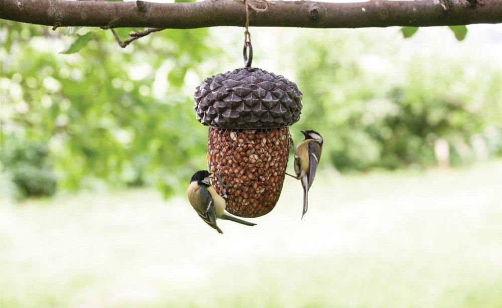 vogels voeren vogelvoer