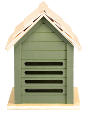 Lieveheersbeestjes huis oud groen