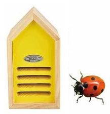 Lieveheersbeesthuis geel