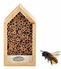 Bijenhuis wit