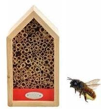 Bijenhuis rood
