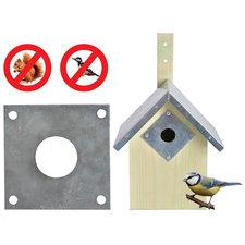 Beschermingsplaat voor nestkastje pimpelmees